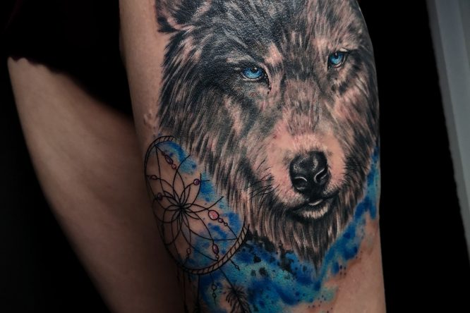 Colorful Wolf cover up tattoo