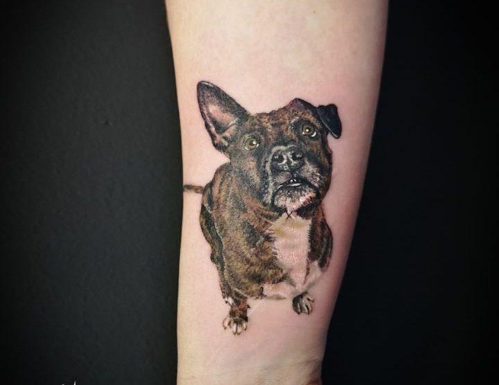 Small realistic dog tattoo